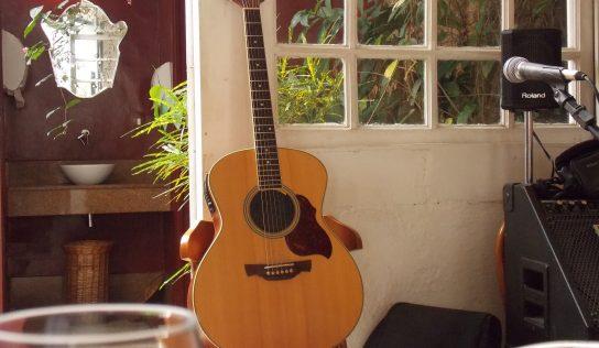 Prvý výber gitary.  Ako zvoliť vhodný typ gitary?