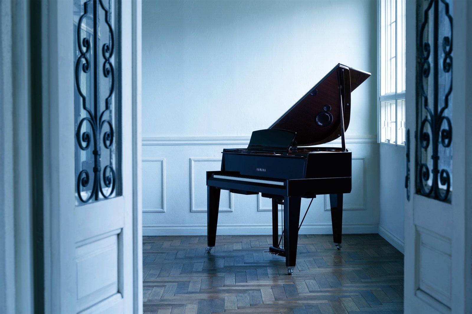klavírne krídlo