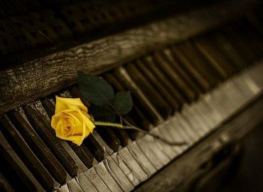 Klavír a klávesové nástroje – všetko, čo potrebujete vedieť.
