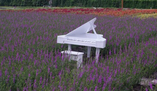 Stoličky ku klavíru